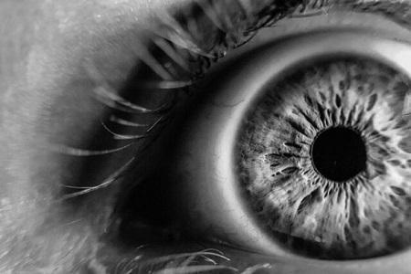 مردمک چشم از ریتم محیط پیروی می نماید